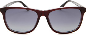 Hugo Boss sunglasses at LF Optical